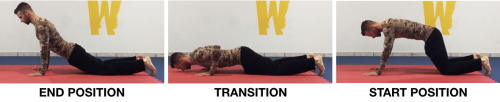 WAVE PUSH UP PROGRESSION