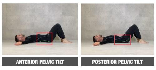 SPT (Supine Pelvic Tilt)