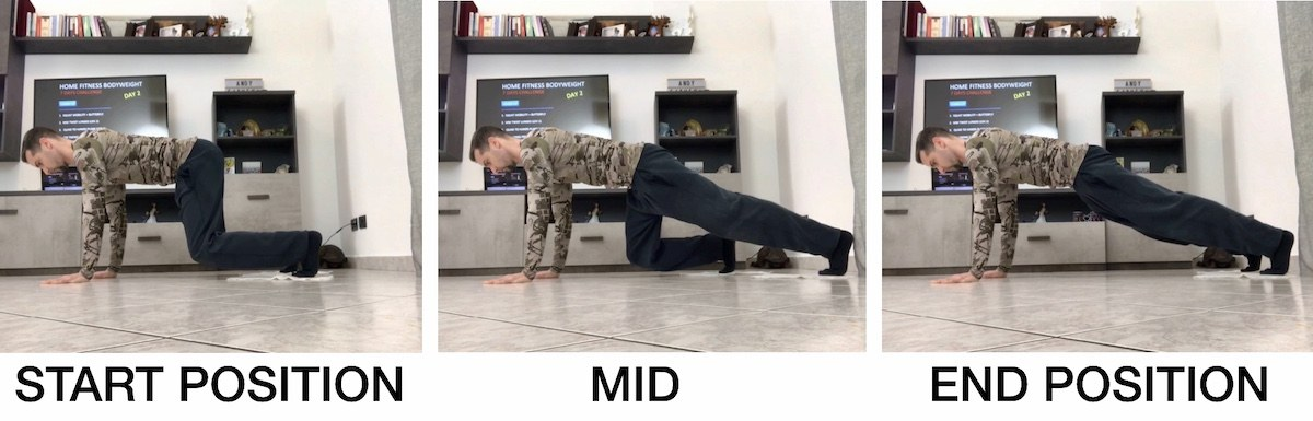 HFB Sliding Quad to Hands Plank (Lev.1)