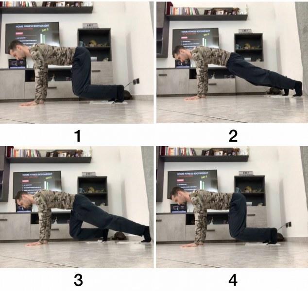 HFB Sliding Quad to Hands Plank (Lev.2)